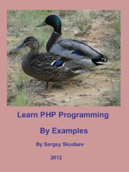 Learn PHP Programming by Examples